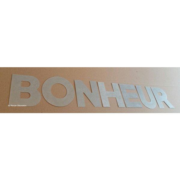 Lettre decorative en zinc BONHEUR 30 cm