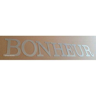 Lettre decorative en zinc BONHEUR 20 cm