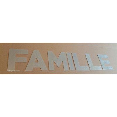 Lettre decorative en zinc FAMILLE 30 cm