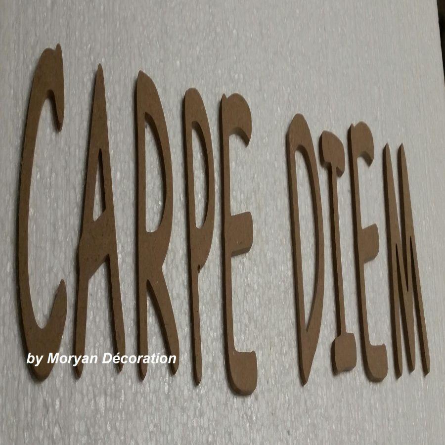 Lettres décoratives en bois à peindre ou à décorer CARPE DIEM